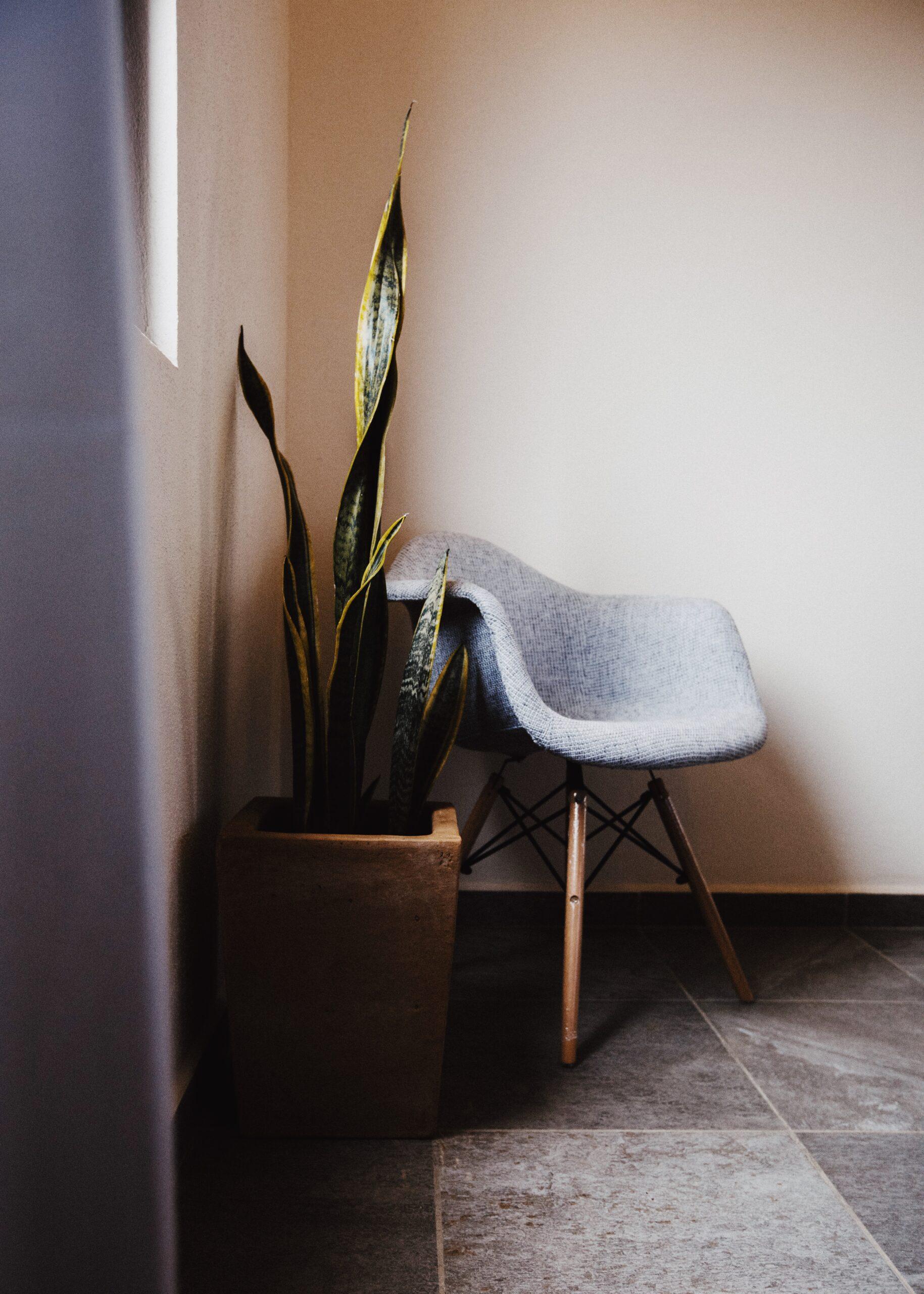 Florence Sayulita - Interior Details